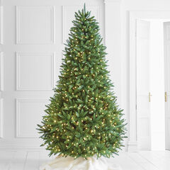 8½' Pre-Lit Fraser Fir Tree , GREEN