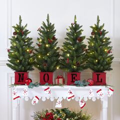 Noel Potted Holiday Trees, Set of 4,