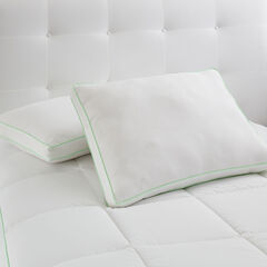 Allergy-Free 2-Pillow Pack,
