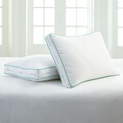 BrylaneHome Studio® Paragon Down Alternative Medium/Back 2-Pillow Pack ,