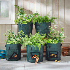 Set of 5 Vegetable Grow Bags,