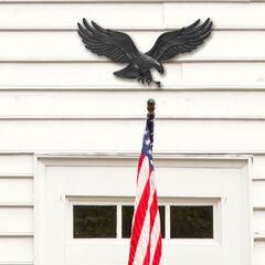 """29"""" Wall Eagle,"""