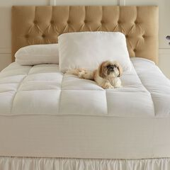 Gel Touch Bed Tite Topper and Pillows,