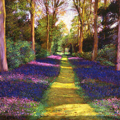 Blue Path Outdoor Canvas Art,