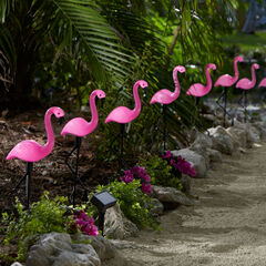 Flamingo Solar Stake Lights, Set of 10,