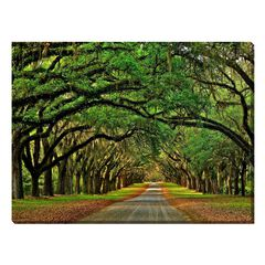 Avenue of The Oaks Outdoor Canvas Art,