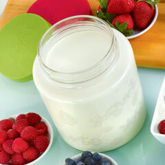 64 Oz Glass Jar with lid for Euro Cuisine YM260 - YM360 - YM460 Yogurt and Greek Yogurt Maker,