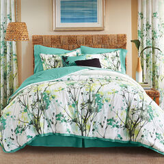 Funky Floral 6-Pc. Comforter Set, WHITE GREEN MULTI