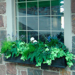 Mayne® Fairfield 5' Window Box,
