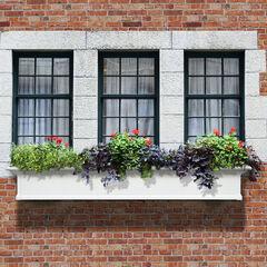 Yorkshire 6' Window Box,