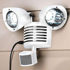 Solar Motion Sensor Security Light,
