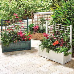 Flower Box With Trellis,