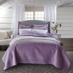 Velvet Embossed 3-Pc. Quilt Set,