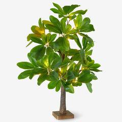 "23½"" Pre-Lit Tabletop Tree,"