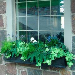 Fairfield 5' Window Box,