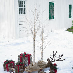 4' Pre-Lit Birch Tree,