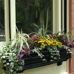Nantucket 5' Window Box,