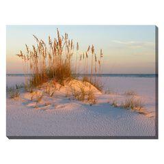 Sea Oats & Sand Outdoor Canvas Art,