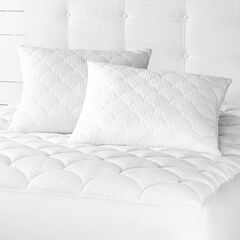 Purely Cool 2-Pack Pillows,