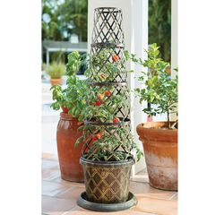 Tomato Cone-Shaped Planter,
