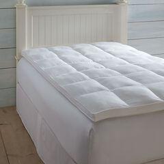 Beyond Down Fiber Bed,