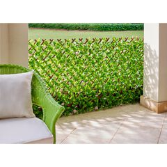 Green/Rose Privacy Screen,