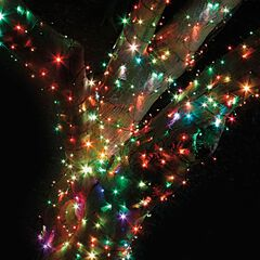 96 String Lights ,