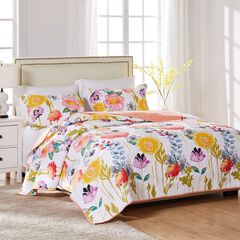 Watercolor Dream Quilt Set ,