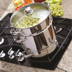Euro Cuisine Stove Top Steam Juicer,