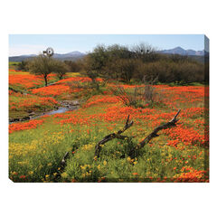 Home On The Range Outdoor Canvas Art,