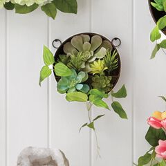 Small Succulent Wall Arrangement,