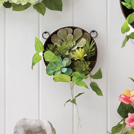 Small Succulent Wall Arrangement, GREEN