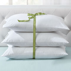 3-Pack Pillow,