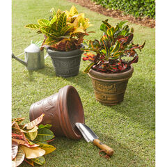 Set of 3 Assorted Planters,