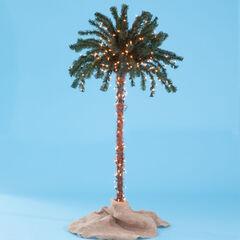 3-D Pre-Lit Palm Tree,