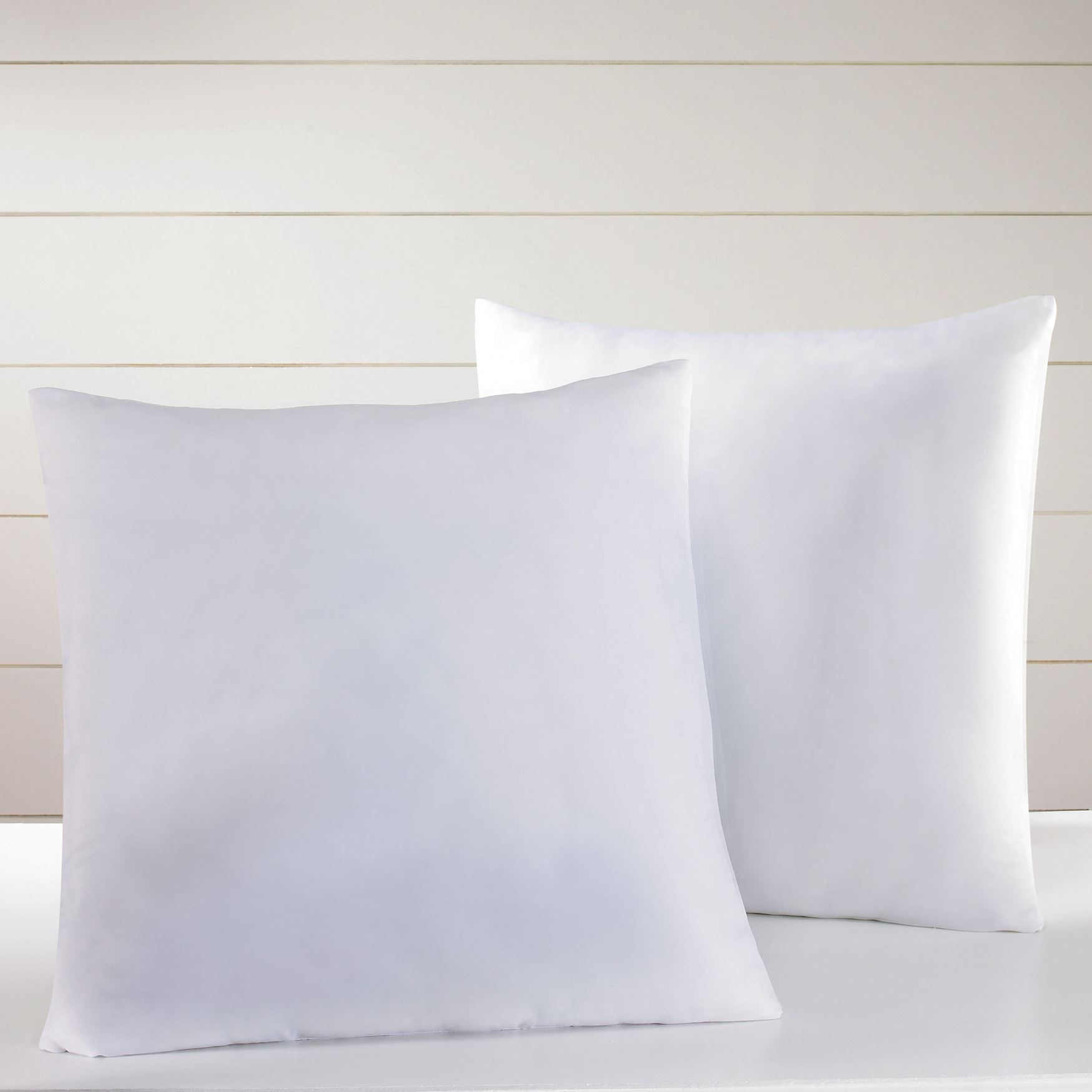 2-Pack Standard Euro Pillows, WHITE