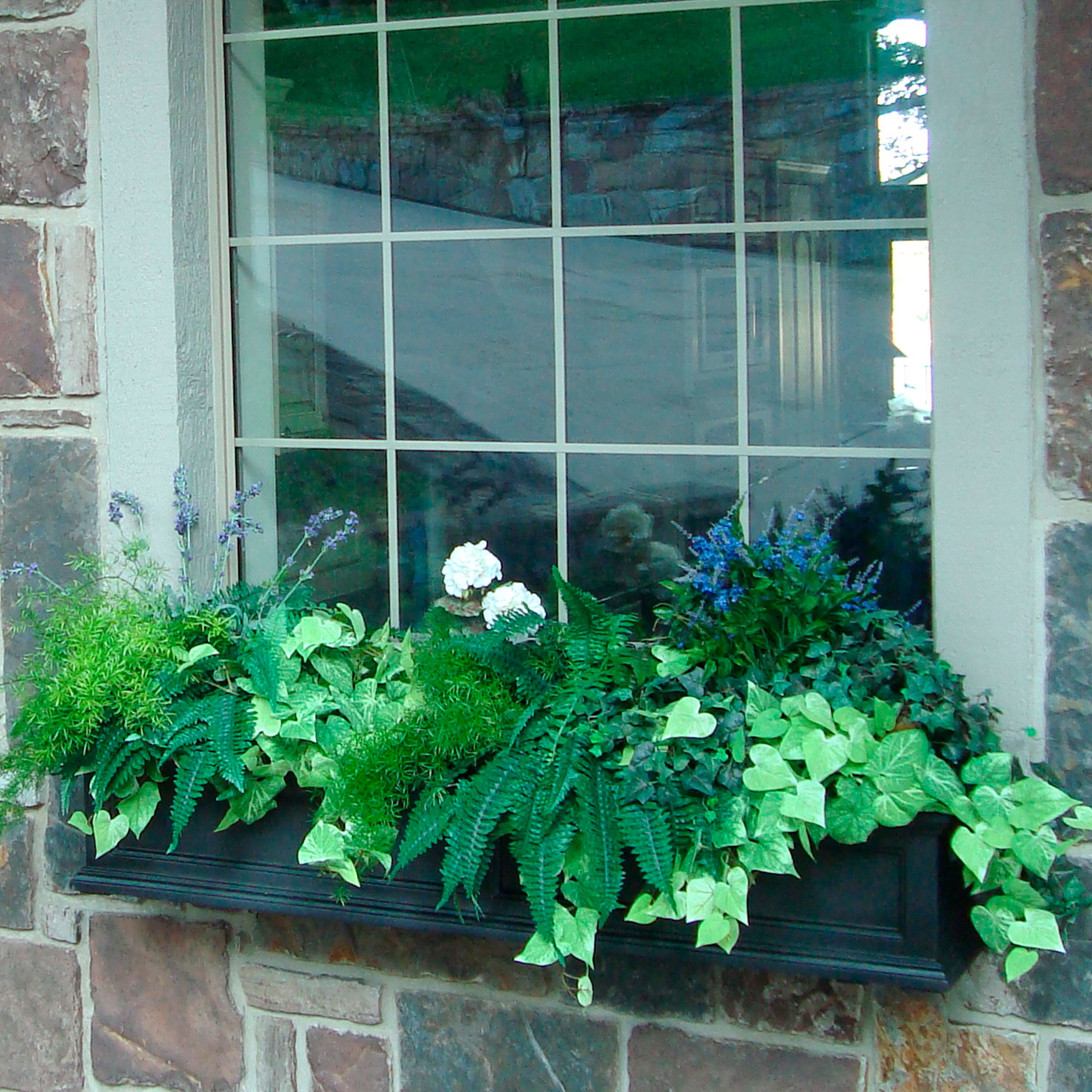 Fairfield 5' Window Box,