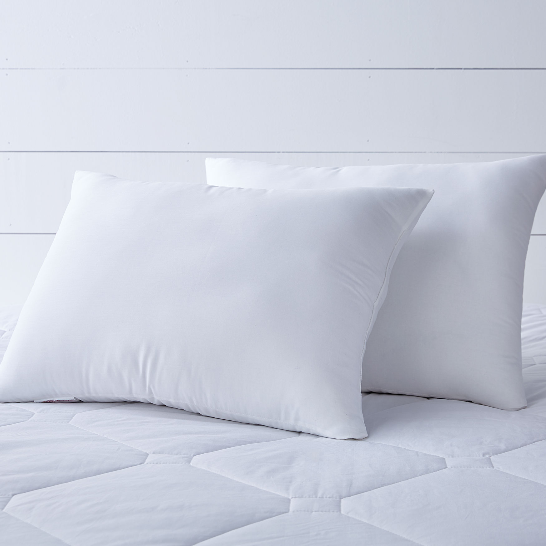 Cambridge Cotton Silk Pillow,