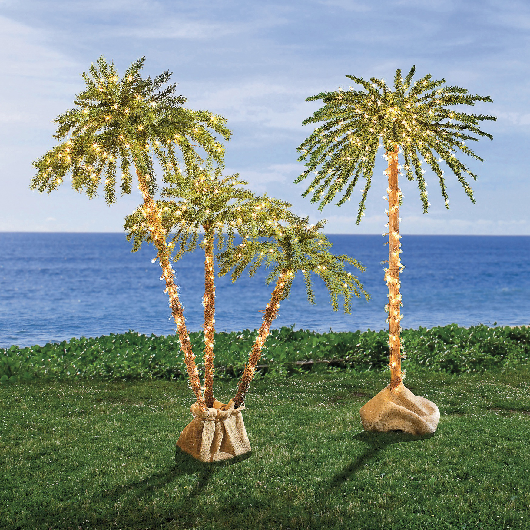 Pre-Lit 3-Branch Palm Tree, LED
