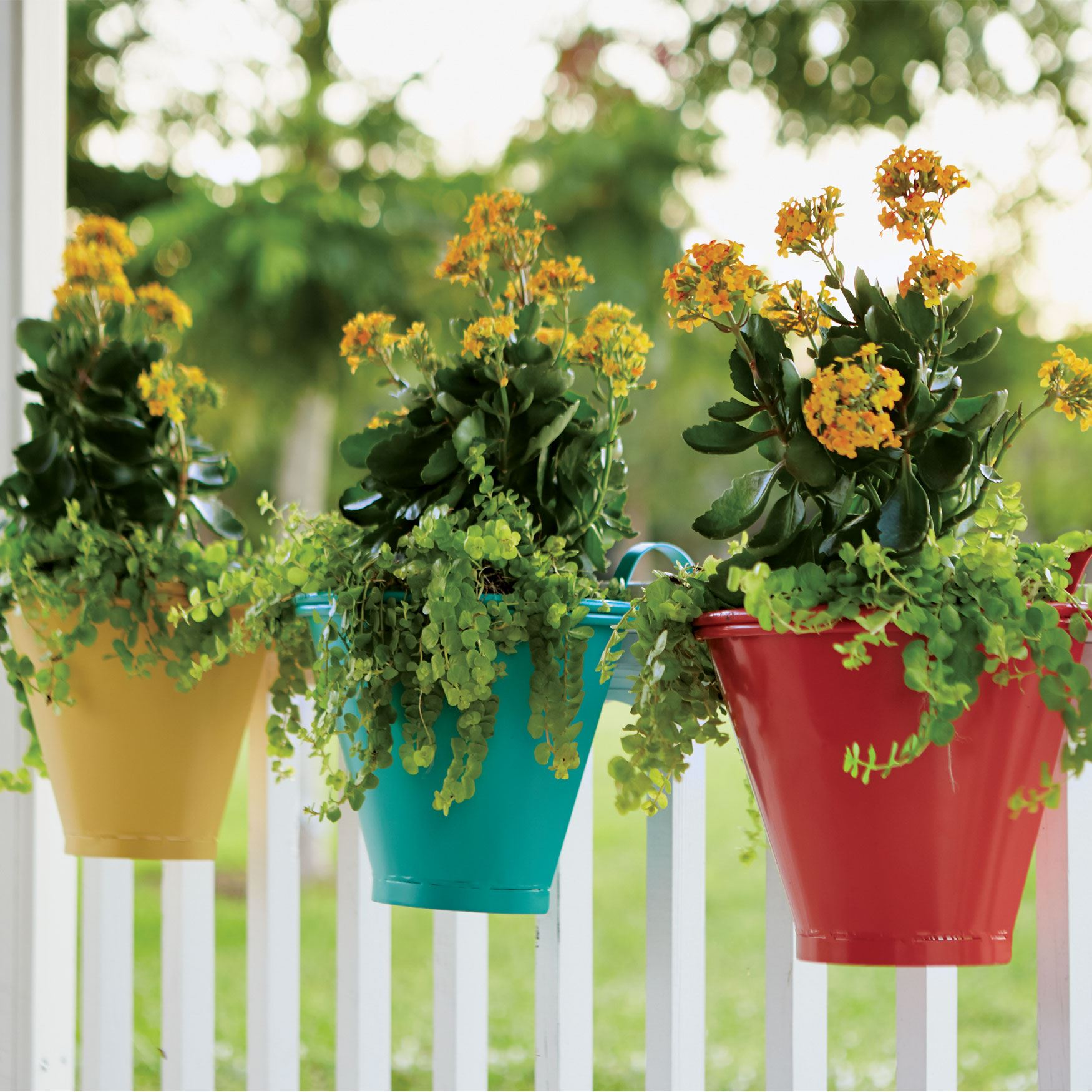 Hanging Planters, Set of 3, MULTI
